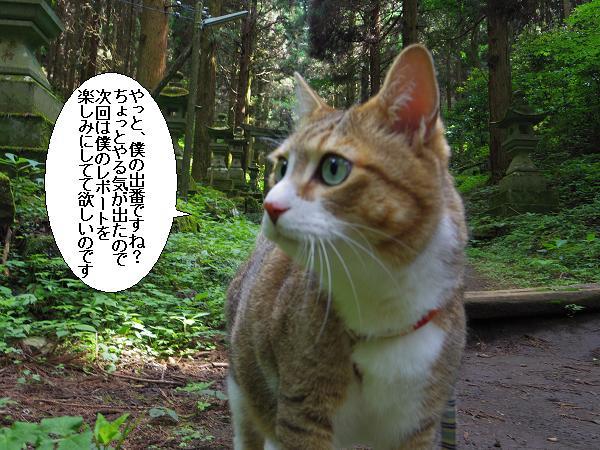 上色見熊野座神社15