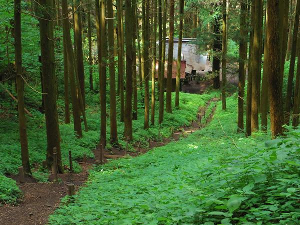 上色見熊野座神社11