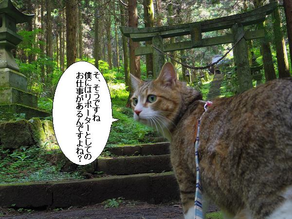 上色見熊野座神社20