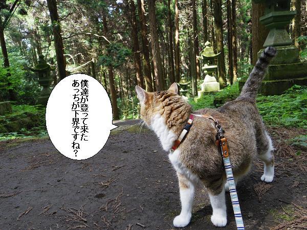 上色見熊野座神社16