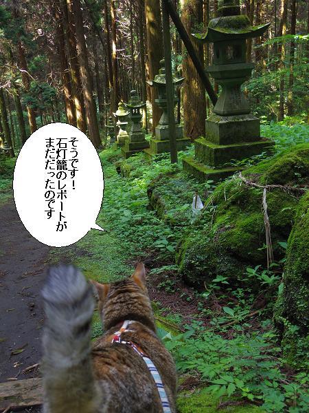 上色見熊野座神社25
