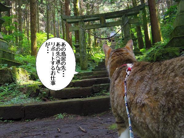 上色見熊野座神社21