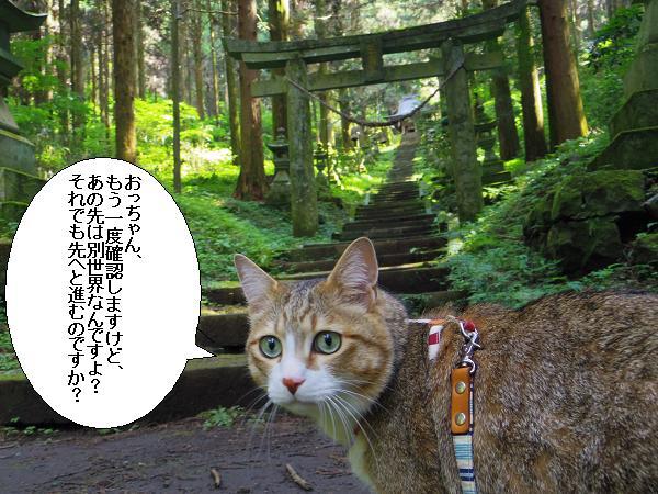 上色見熊野座神社22