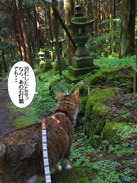 上色見熊野座神社24