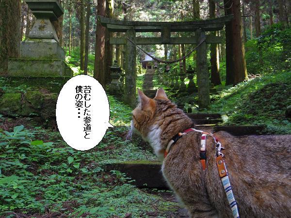 上色見熊野座神社23