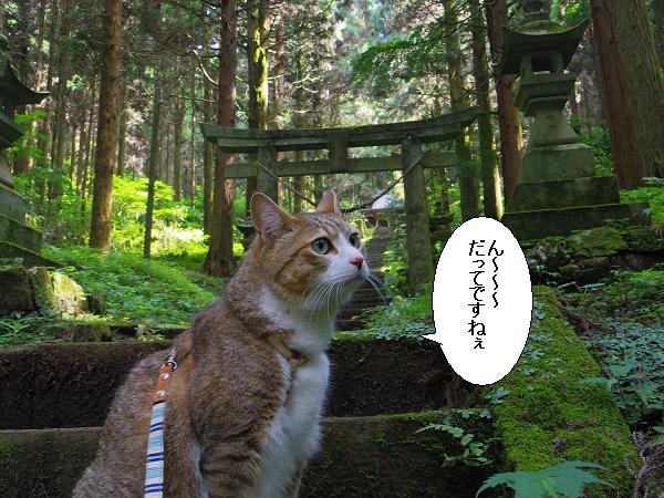 上色見熊野座神社26