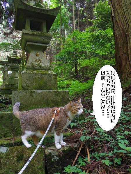 上色見熊野座神社28