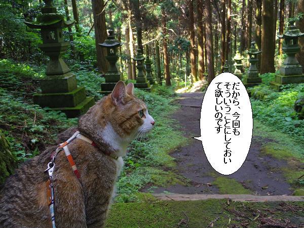 上色見熊野座神社29