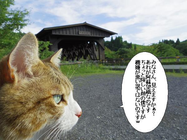 阿蘇望橋と池山水源1