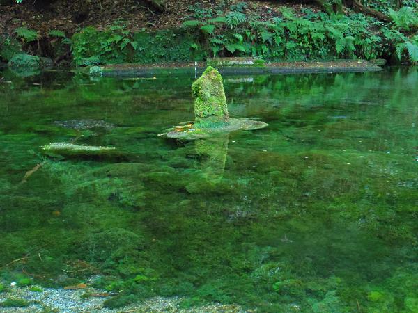 阿蘇望橋と池山水源4