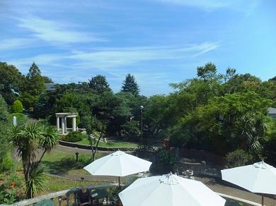 庭園の眺め