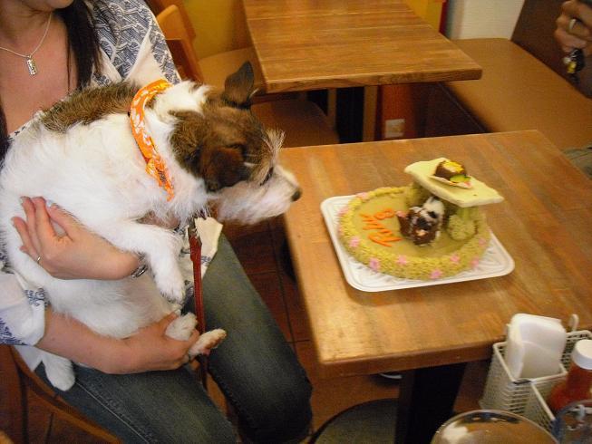 プルケーキ