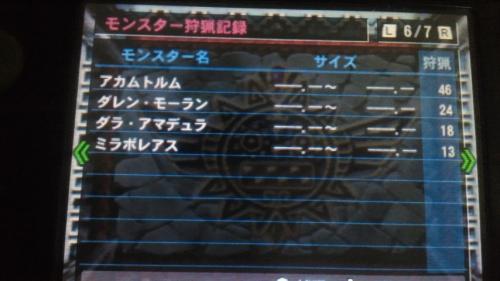 NEC_0418.jpg