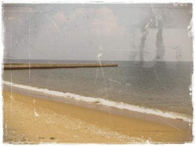 DSC_1912.jpg