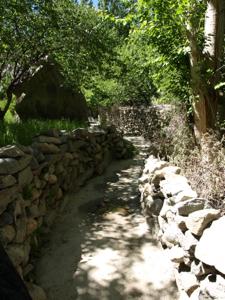 3-16ヌプラ・トゥルトゥクの小道