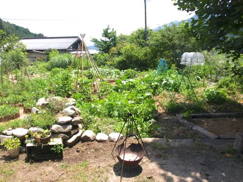 畑整備完了20130711