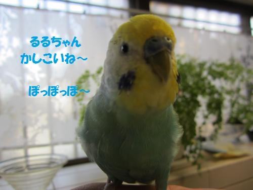 るる2.8