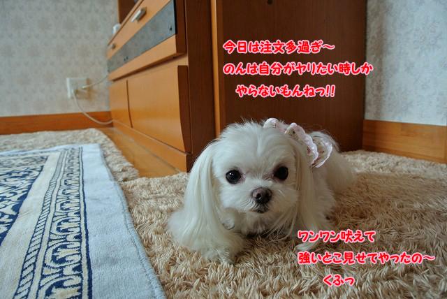 20130712-155.jpg
