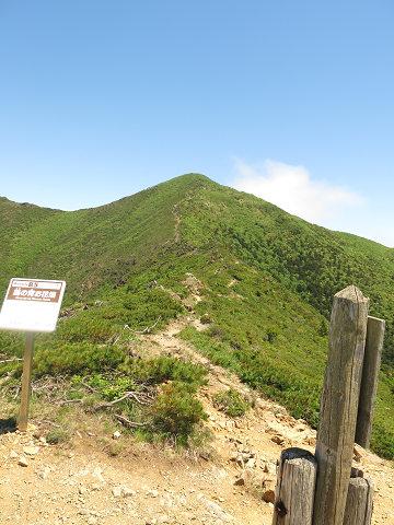 アポイ岳2013.6.12-1