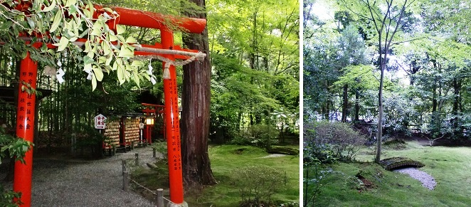 CIMG0203-2014京都⑥