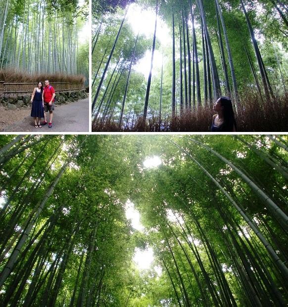 CIMG0196-2014京都⑤