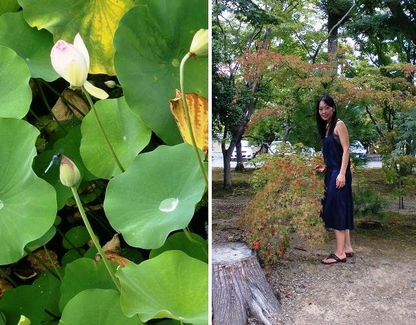 CIMG0145-2014京都②