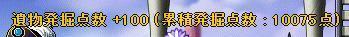 Maple11268a.jpg