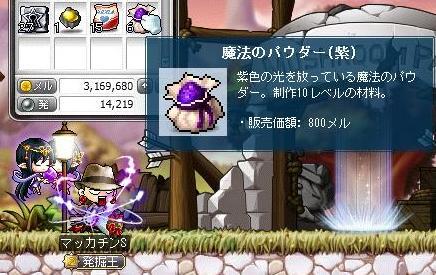 Maple11301a.jpg