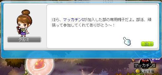 Maple11323a.jpg