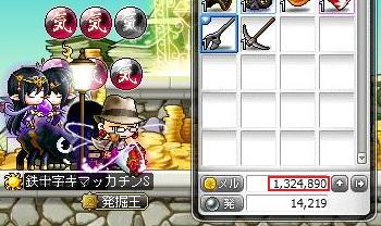 Maple11339a.jpg