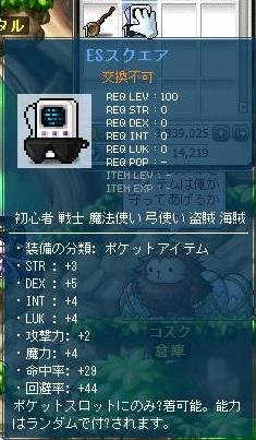 Maple11419a.jpg