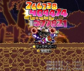 Maple11435a.jpg