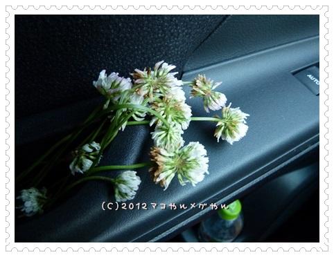 2013natutabi4.jpg