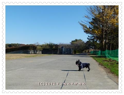 hitachi1_201311261300500c3.jpg