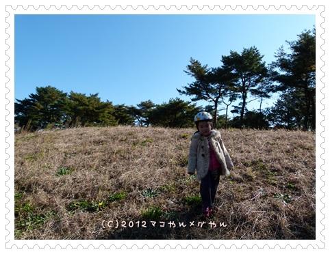 hitachi2_20131126130054810.jpg