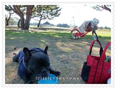 hitachi5_2013112613005848f.jpg