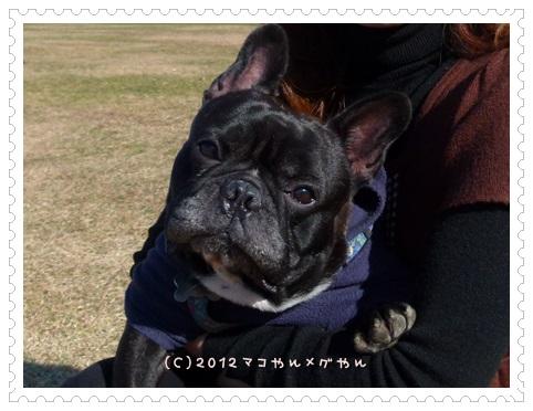 hitachi6_20131126130136cc3.jpg