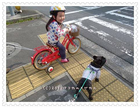 yoyattoL1160223-1.jpg