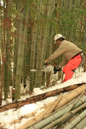 ホタルの宿 ファゴ&薪作り体験8