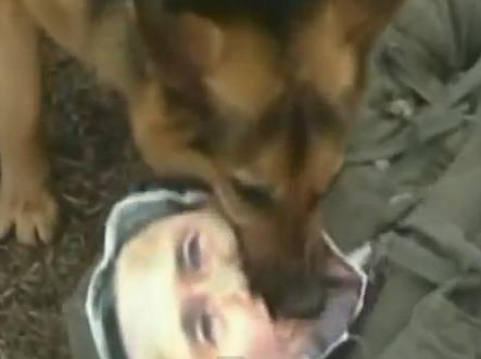 North Korean military dogs maul South Korean effigies during training