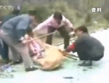 Desperate people rescue little girl from lions mouth