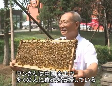 ハチの針治療