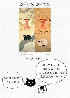 shunso-nekochike.jpg
