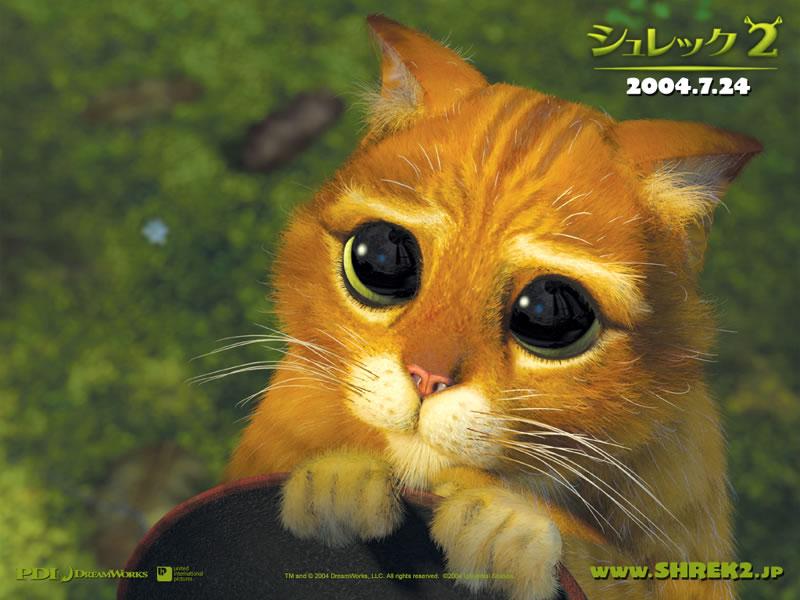 シギョン瞳2