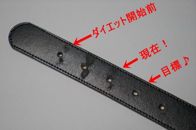 散歩請負人のダイエット状況ご報告!-009