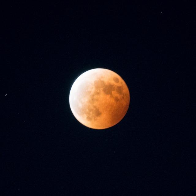 赤いお月様と赤いマリィ-001