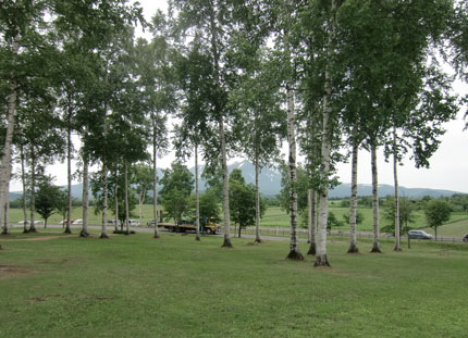 morinoga-den2013-7-1.jpg