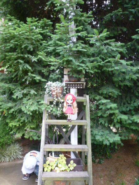 静子さんのお庭♪