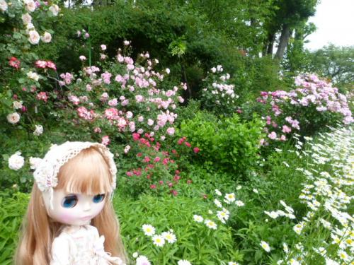 The Natural Gardens of Sakanoさん♪