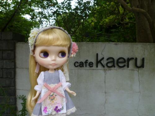 cafe kaeru♪